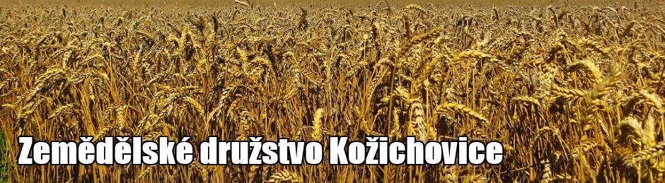 ZD Kožichovice